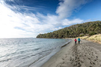 Fluted Cape and Bruny Island Walks