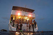 4 Day Coral Sea Dive Trip - Ocean View Deluxe