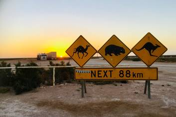 Nullarbor at sunset
